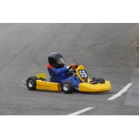 Wholesale GENATA 110CC EEC GO KART GT110GK from china suppliers