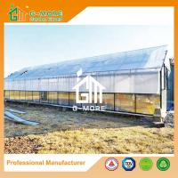 Wholesale Aluminum Greenhouse-Titan series-1406X406X273CM-Green/Black Color-10mm thick PC from china suppliers