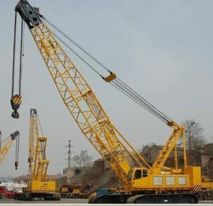 Crawler Crane (QUY50)