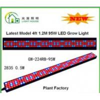 Wholesale High Effective LED Tube Grow Lights Hydroponic For Plant , Long Life Time from china suppliers