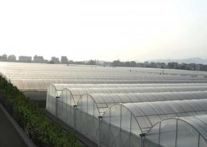 Wholesale Multi Span Hydroponic Tunnel Plastic Cover Greenhouse from china suppliers