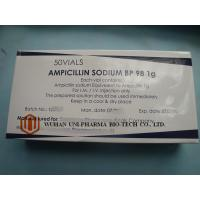 Wholesale Severe Infection Treatment Ampicillin Sodium Injection , Dry Powder Injection 0.5g / 1g from china suppliers