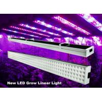Best 4 Feet Linear Hydroponic Led Grow Lights Bar 120w For Greenhouse , 50Hz-60Hz wholesale