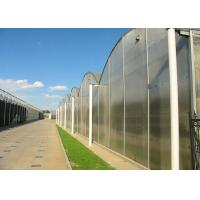 Wholesale Flower Large Polycarbonate Greenhouse Strong Thermal Insulation Sides Ventilation from china suppliers