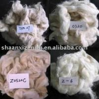 Wholesale Sheep Wool Goat Hair Cashmere and Waste from china suppliers
