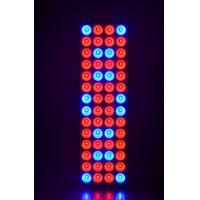 Wholesale 120w 5FT Hydroponic Led Grow Light For Medical Plant / 2 Years Warranty from china suppliers