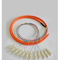Wholesale 12 Cores Optical Fiber Patch Cord SC / UPC 1.5 Meter Fiber Optic Pigtail from china suppliers