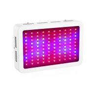 Wholesale LED Indoor Plant Grow Lights IP41 Protection Grade Low Energy Consumption from china suppliers