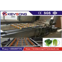 Wholesale Strawberry Cherry  Fruit Washing Machine , Carrot Commercial Vegetable Washer from china suppliers