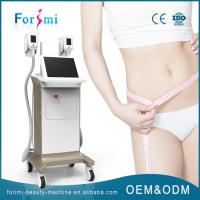 Cool Sculpting 1800W big power two handles fat removal machine in China