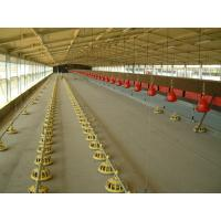 Wholesale Poultry automatic drinker for broilers and layers from china suppliers