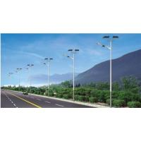 Wholesale Custom Color Solar Powered Lights SS Material Big Size 5 - 10 M Height from china suppliers