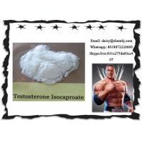 Wholesale Bodybuilding Steroids Test Powder Testosterone Isocaproate for Men CAS 15262-86-9 from china suppliers