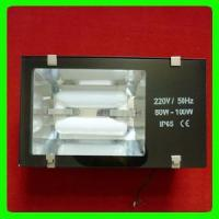 Wholesale Lvd Tunnel Light (RZHL402) from china suppliers
