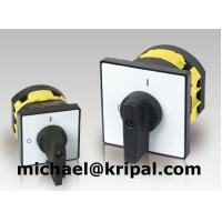 Control switch/cam switch/disconnector switch/motor changeover switch for sale