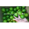 Buy cheap Sell lemon seedless, good price/ fresh lime/ fresh lemon/ lime cheap from wholesalers