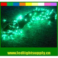 New arrival rgb color changing led christmas lights 110v 24v waterproof for sale