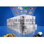 China Cassava Mesh Belt Dryer for sale