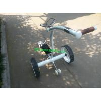 Wholesale Top quality Stainless steel Golf Trolley with double brushless motors from china suppliers