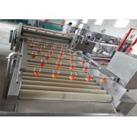 Wholesale Commercial Ozone Fruit Processing EquipmentWith Air Bubble Brush Rolling from china suppliers