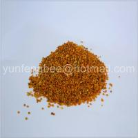 China Newest food grade camellia bee pollen granules on sale