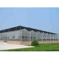 Cheap Glass Greenhouse for sale