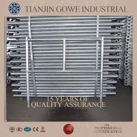 Best Hot dipped galvanized all round scaffolding / quick erect scaffold wholesale