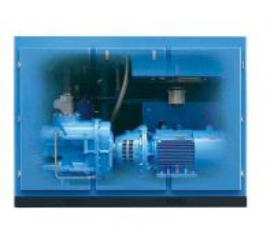 AC Power Two Stage Screw Compressor 0.7-1.3Mpa Customized Voltage