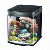 Wholesale New Design Glass Fish Tank with UV Light Sterilizer from china suppliers