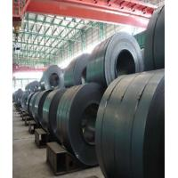 ASTM AISI Lutaida 304 Stainless Steel Coil , Stainless Steel 304 Sheet