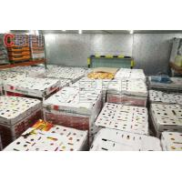 Low Temperature Big Cold Room Project Cheese Frozen Food Storage Cold Room Freezer for sale