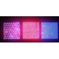 Wholesale 300W Built-in Cooling System Different Ratio Of Red / Blue High Power LED Grow Lights from china suppliers