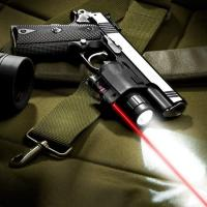 China Red Laser 160 Lumen Weapon Light AU11590 Tactical Laser Sight Flashlight on sale