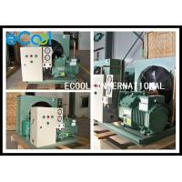 Multi Functional Freezer Condensing Unit For Frozen Cold Storage Room for sale
