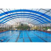 Wholesale Polycarbonate sheet swimming pool from china suppliers