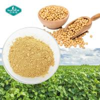 Wholesale 100% Natural Women Health Soybean Extract 40% Soy Isoflavone with Daidzein 15% for Menopausal Osteoporosis from china suppliers