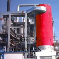 Best Electric Gas Fired Thermal Oil Boiler 1.6 Mpa With Horizontal And Vertical wholesale