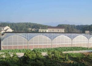 Wholesale Fruits Flower 8m Single Span PE Plastic Film Greenhouse from china suppliers