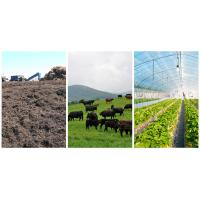 Wholesale Feeding Natural Zeolite Powder for Chicken / Pigs / Cattle and Fish from china suppliers