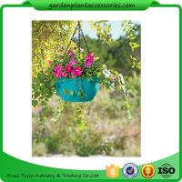 Wholesale Colorful ABS Plastic Hanging Pots Includes Hanging Chain With Hook from china suppliers
