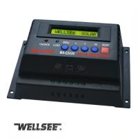 Quality Promotion WELLSEE WS-C2430 20A 12/24V battery charger controller for sale