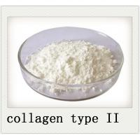 Wholesale 9007 34 5 Joint Health Powder Chicken Sternum Cartilage Collagen Type II from china suppliers