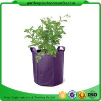 Wholesale Easy Assembly Hanging Grow Bags from china suppliers