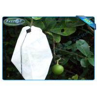 China Nonwoven Agiculture Plant Grow Bags For Fruit Growth and Protection , Potato Grow Bags on sale
