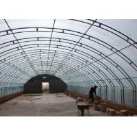 Wholesale Square Round Greenhouse Steel Pipe , Pre Galvanized Steel Pipe Rustproof from china suppliers
