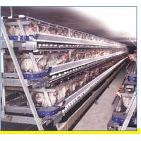 Wholesale Automatic poultry ventilation system from china suppliers
