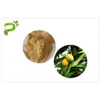 Wholesale Natural Plant Extract Powder Anti - Inflammatory Mangiferin From Mango Leaf from china suppliers
