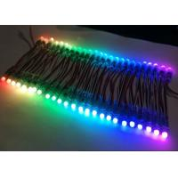 Wholesale Black Wires Programmable LED Pixel Module DC12V/5V Ws2811 Ucs1903 UV Proof from china suppliers