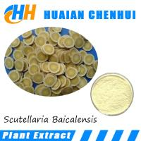 Wholesale Scutellaria Baicalensis Extract, Baicalin CAS No.: 21967-41-9, from china suppliers