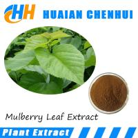 Quality Cosmetic grade Mulberry Leaf Extract anti melanin 100% natural mulberry leaf for sale